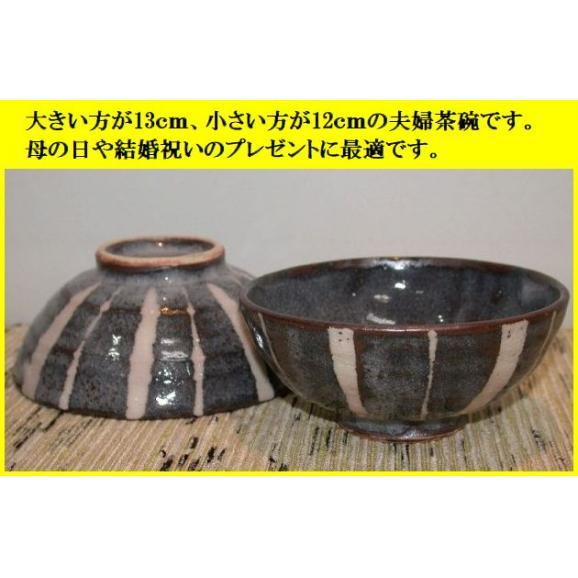 ご飯茶碗 飯碗 陶器 プレゼント 鼠志野トクサ文夫婦茶碗 美濃焼 玉山窯03