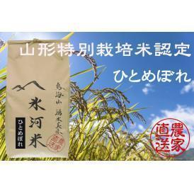 新米予約 9月下旬発送 山形特別栽培米認定 「氷河米」ひとめぼれ 精米5kg