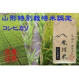 新米予約 10月上旬発送 山形特別栽培米認定 「氷河米」コシヒカリ 玄米5kg