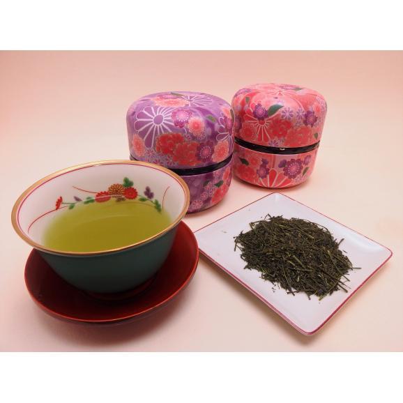 静岡高級煎茶 なつめ缶(紅)1缶箱入【80g】04