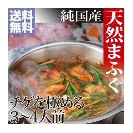 【送料無料】 天然真ふぐのチゲ鍋セット 500g