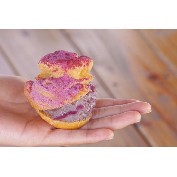 YUNAMI FACTORY オリジナル 冷凍紅芋シュークリーム 10コ入り05