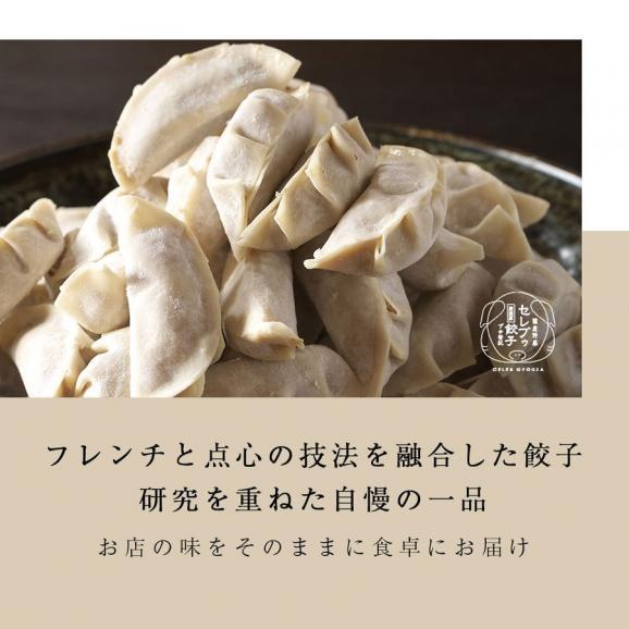 【送料無料】 厳選豚餃子 餃子50個 約1キロ 10人前 プチ贅沢 セレブ 冷凍 国産野菜02