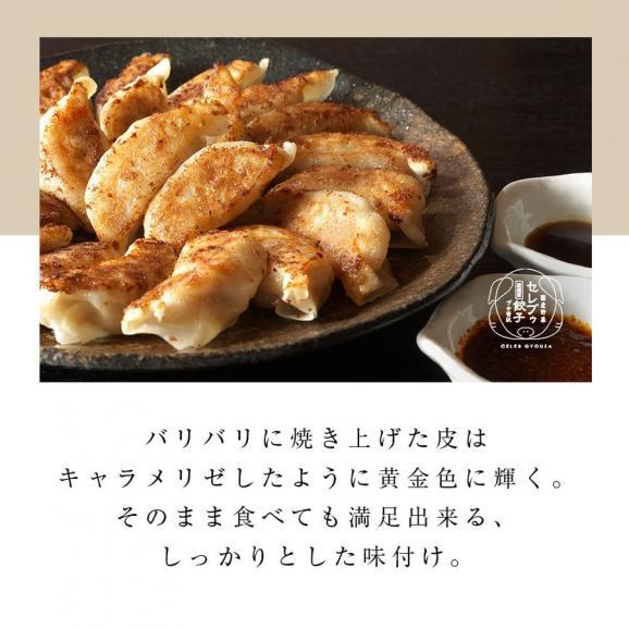 【送料無料】 厳選豚餃子 餃子50個 約1キロ 10人前 プチ贅沢 セレブ 冷凍 国産野菜04