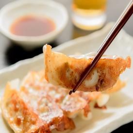 【送料無料】鰹タタキの龍馬ギョーザ(1パック8ヶ入り×5)