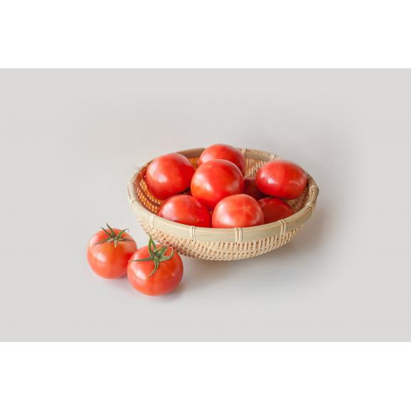 大玉完熟トマト 「まるたかトマト」01