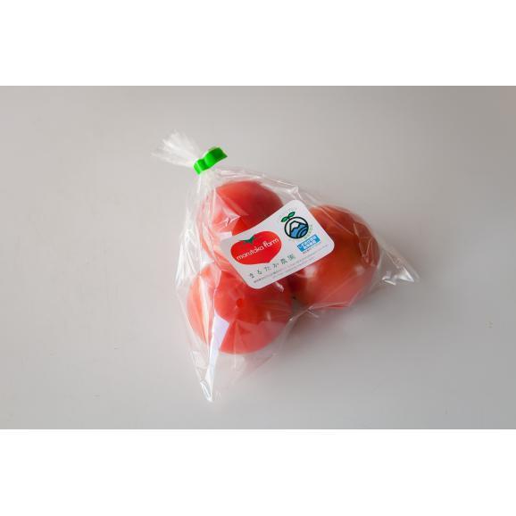 大玉完熟トマト 「まるたかトマト」03