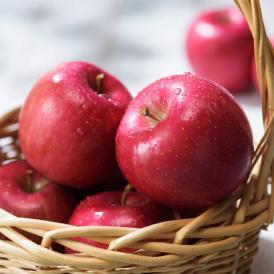 【送料無料・青森産】りんごを作り続けて100年の農家、成田農園の贈答用サンふじ(10kg)