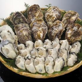 むき身・殻付き生牡蠣セット(むき身1kg・殻付き20個セット5~6人用)