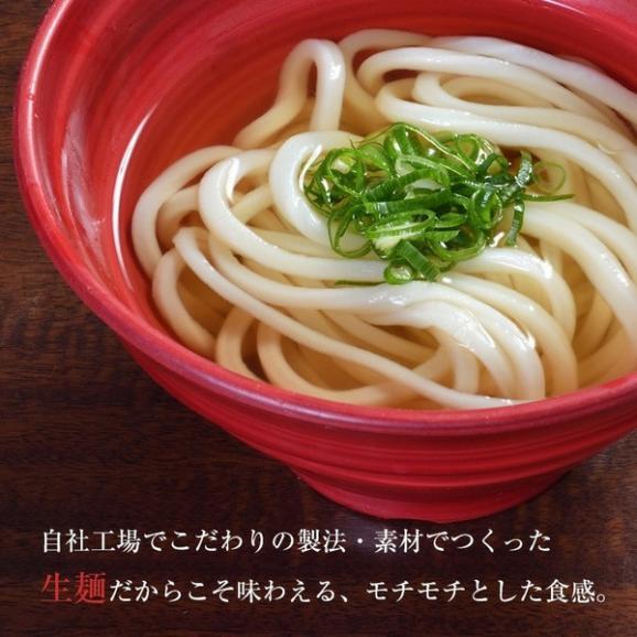 贈答用生麺さぬきうどんギフト(21人前)出汁付02