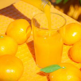 オレンジハート ジュース