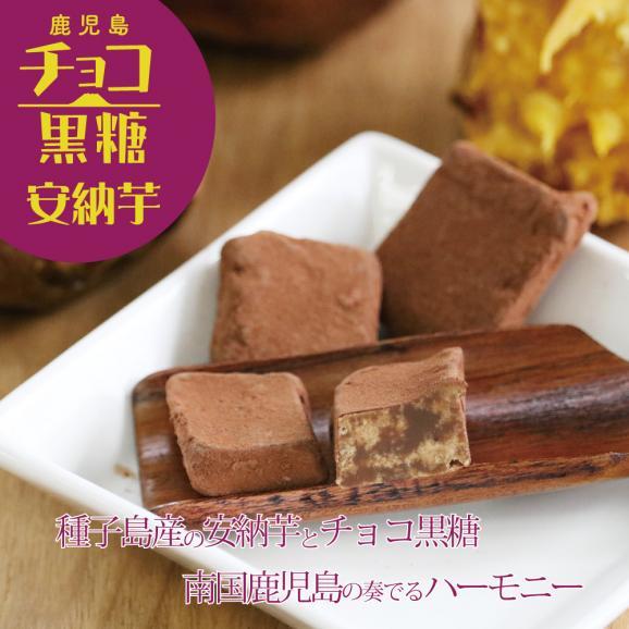 人気のチョコ黒糖3種セット(プレーン、タンカン、安納芋)04