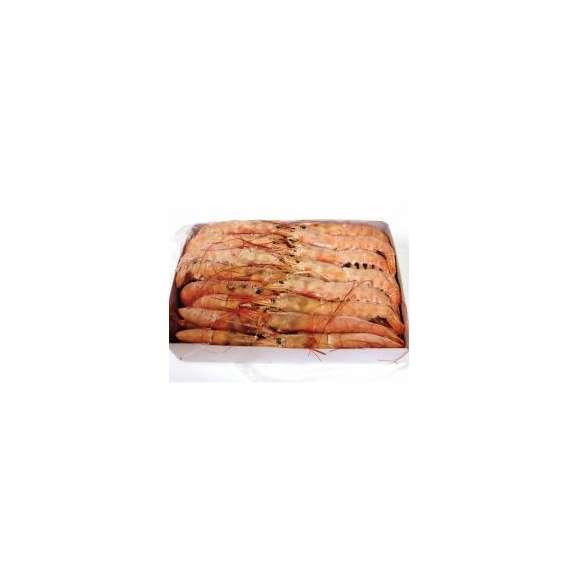 【赤海老刺身用特大サイズ】=業務用/アルゼンチン赤エビ 特大 L1サイズ(約30尾)2kg生食用/アカエビ/大海老02