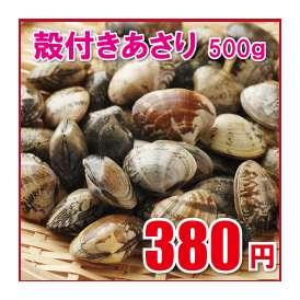 【殻付きあさり】=業務用冷凍貝/アサリ砂抜き済ボイル/1パック500g/浅蜊/浅利/ペスカトーレ/チャウダー