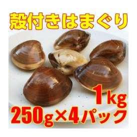 =【ボイル 殻付 はまぐり】小サイズ=250g×4袋 計1kg (20~30個) 業務用 冷凍 天然 ハマグリ 蛤/吸い物 鍋 パスタ 酒蒸し ブイヤベース 等
