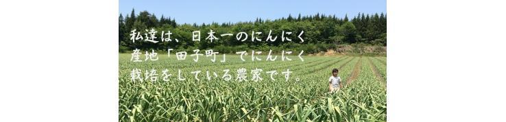 有限会社 沢田ファーム
