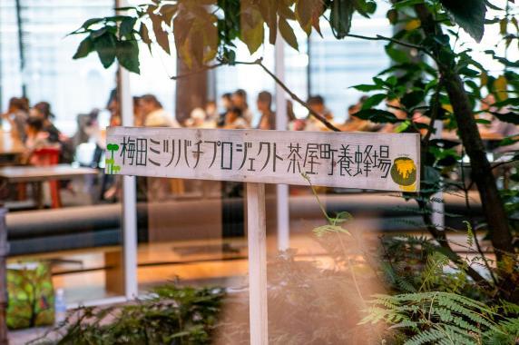 OSAKAHONEY/大阪ハニー